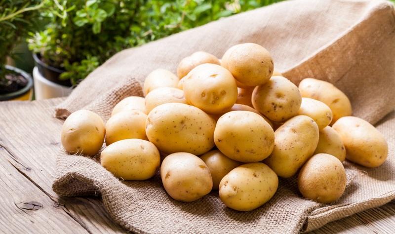 Перепроизводство картофеля ждет Казахстан