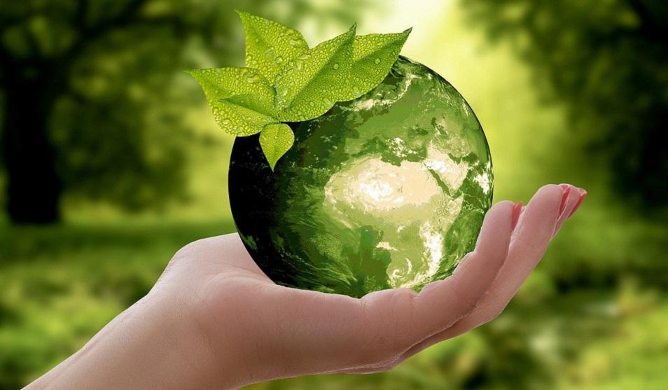 О том, как женщины спасают нашу планету