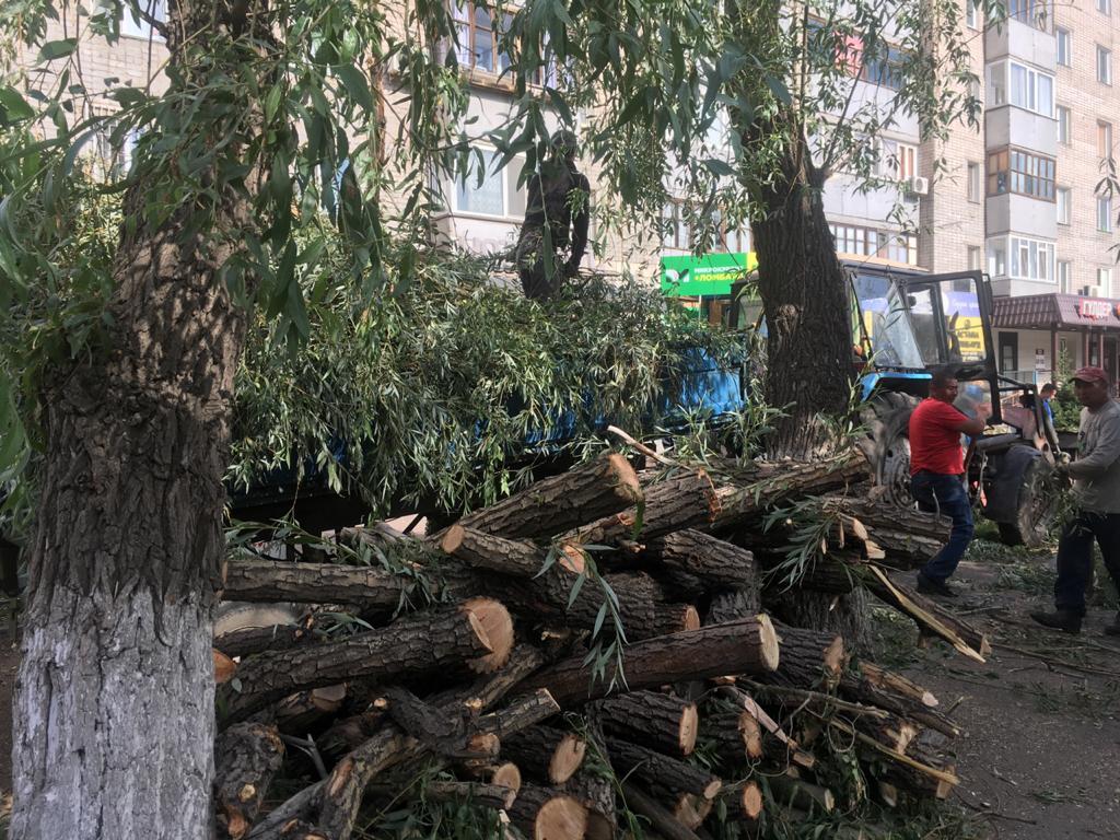 Аким Павлодара решил опираться в принятии решений на народ