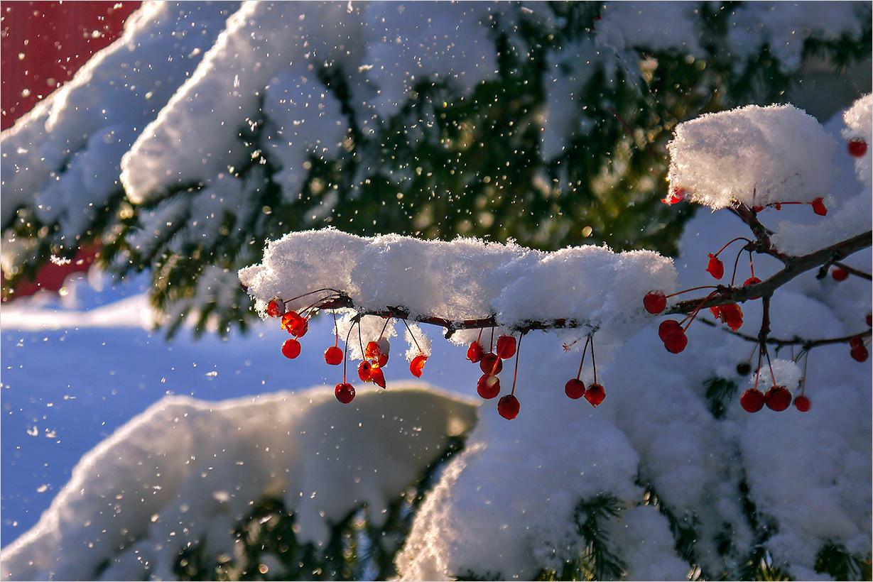 Какая зима ждет казахстанцев
