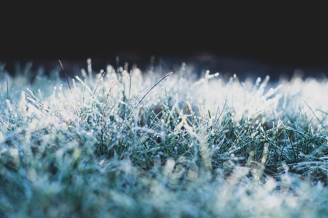 Погода в Казахстане: в ряде регионов ожидаются заморозки