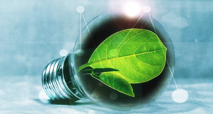 Рустем Кабжанов: «Зеленые» инвестиции – это улучшение экологии и стимул для экономического роста