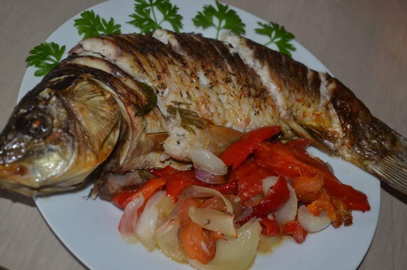 В какой области РК выловили больше всего рыбы