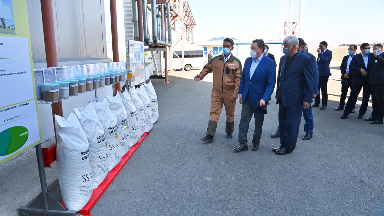 Премьер-министру доложили о планах развития сахарной отрасли в Алматинской области