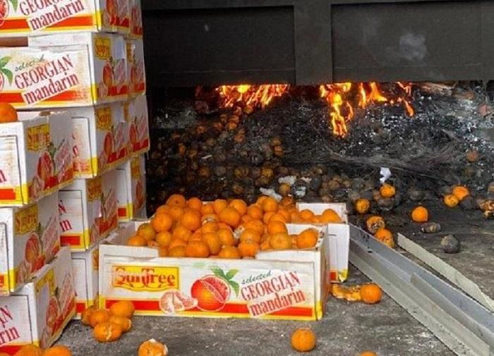 Уничтожена крупная партия опасных мандаринов из Грузии – МСХ РК