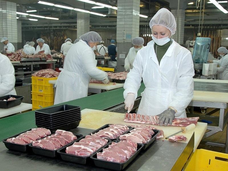 В РК почти треть всей животноводческой продукции обеспечили два региона