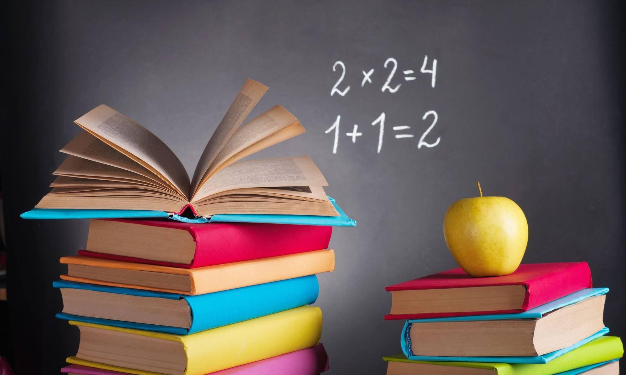 Какие учебники останутся едиными для всех школ