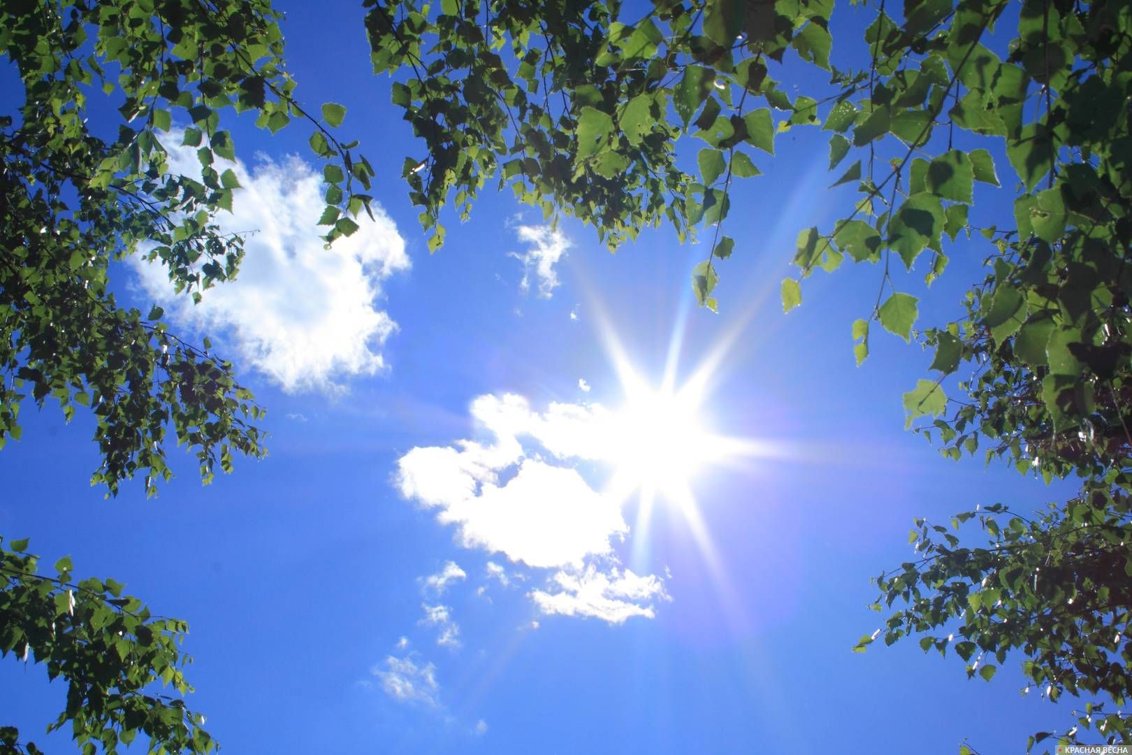 Когда спадет жара на севере Казахстана