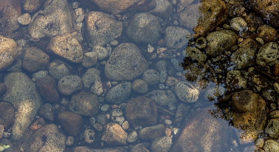Реки Атырауской области на грани экологической катастрофы