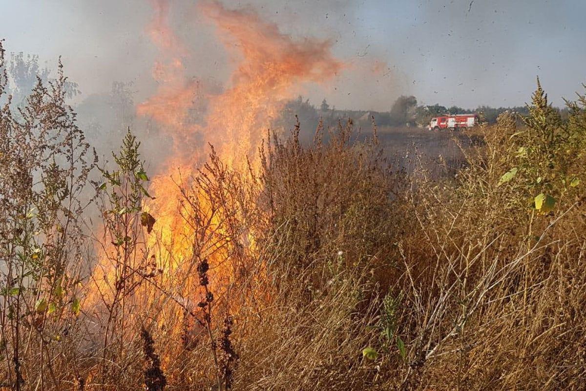 Более 40 раз за сутки  выезжали костанайские пожарные