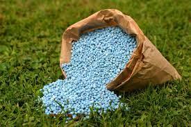 Больше 100 тысяч тонн минеральных удобрений внесли в почву североказахстанские аграрии