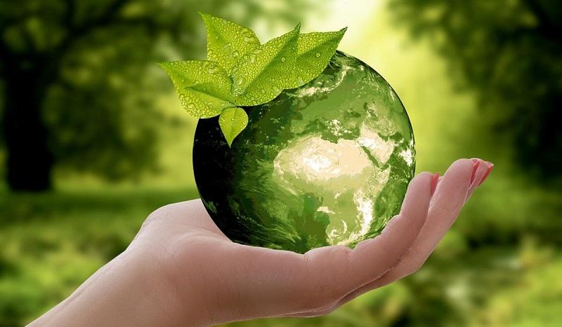 Почти 370 млрд тенге за 10 лет были направлены на охрану окружающей среды