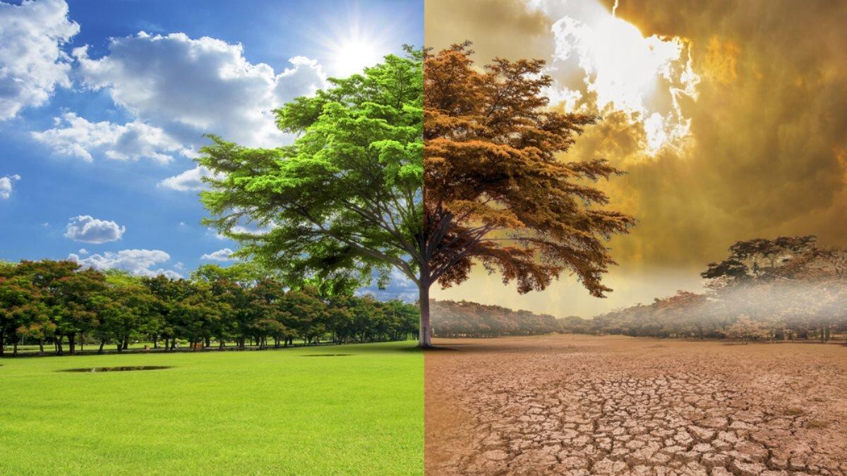 Названа причина возникновения природных бедствий по всему миру