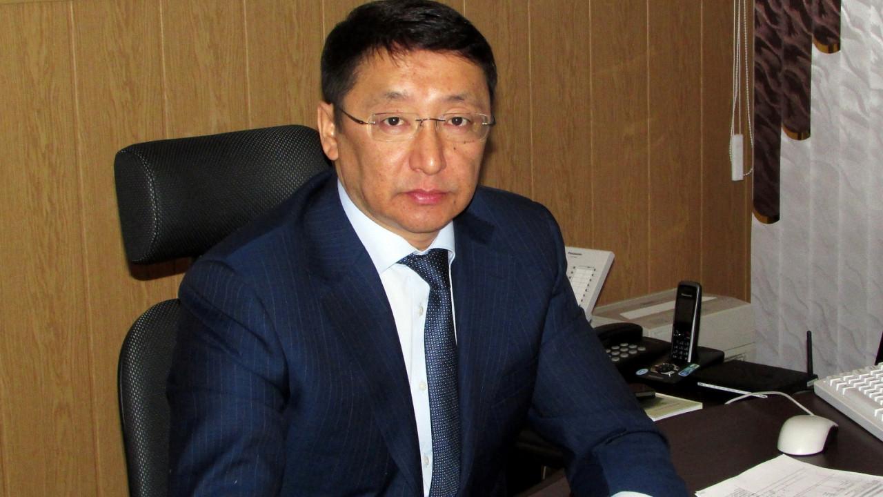 Досье: Альжанов Нурлан Сагинаевич, Нурлан Альжанов, досье, Комитет госдоходов