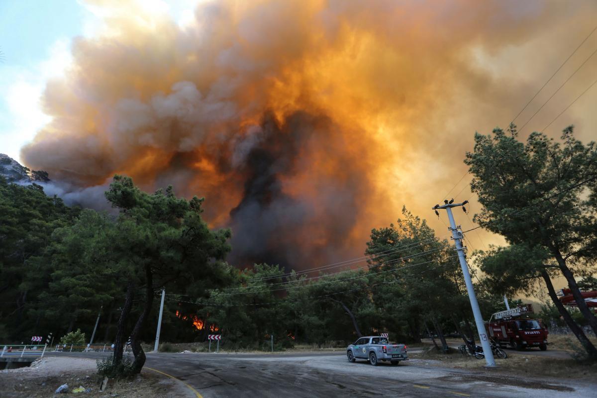 Анталья и другие пострадавшие от лесных пожаров провинции Турции объявлены зонами бедствий