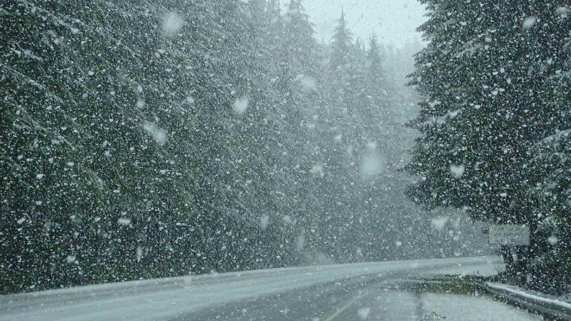 Погода в РК: сильные осадки обещают в Акмолинской области и ВКО