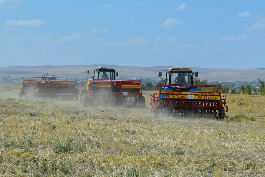 В Туркестанской области начался сев озимых зерновых