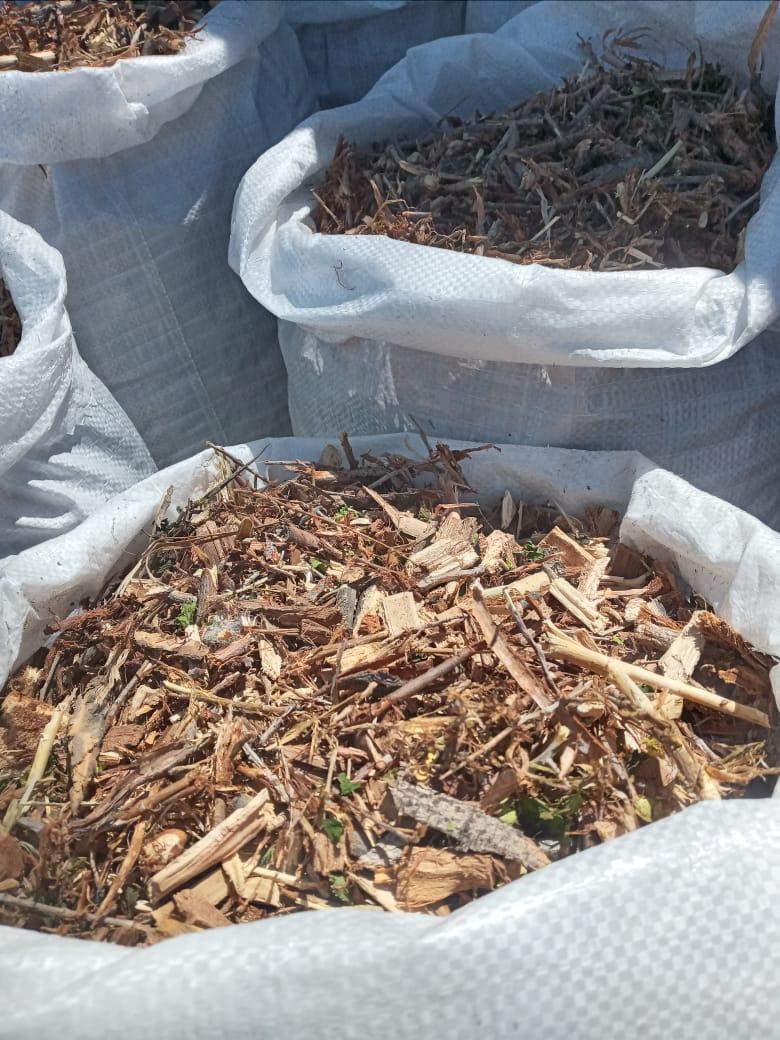 Атырауда ағаш қалдықтары өңделуде