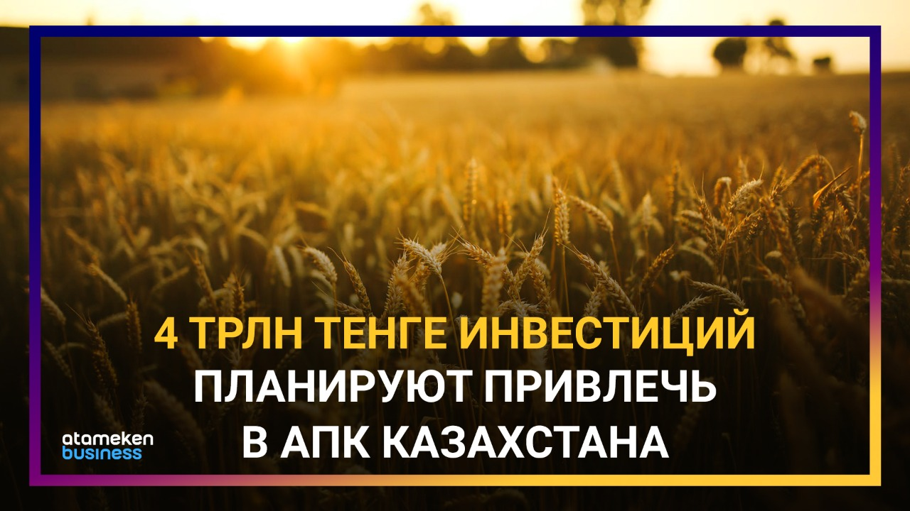 Правительство взялось за агросектор: какие новые проекты предлагает минсельхоз?