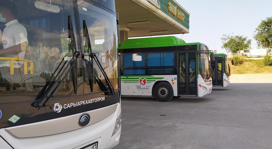 Лебедь, рак и щука шымкентских автобусов