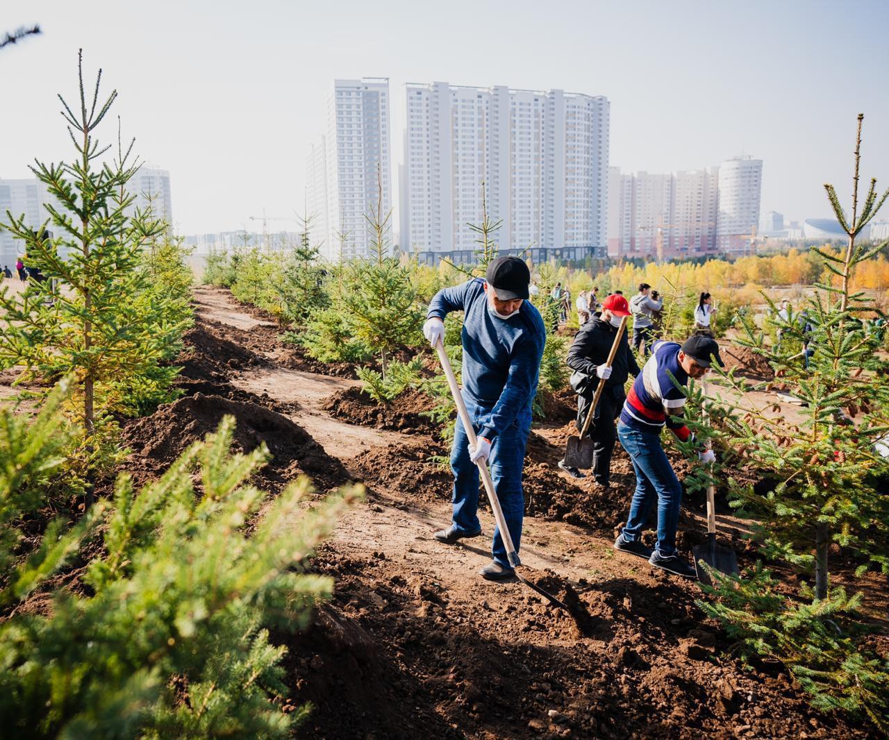 Экологических зон становится больше в Нур-Султане