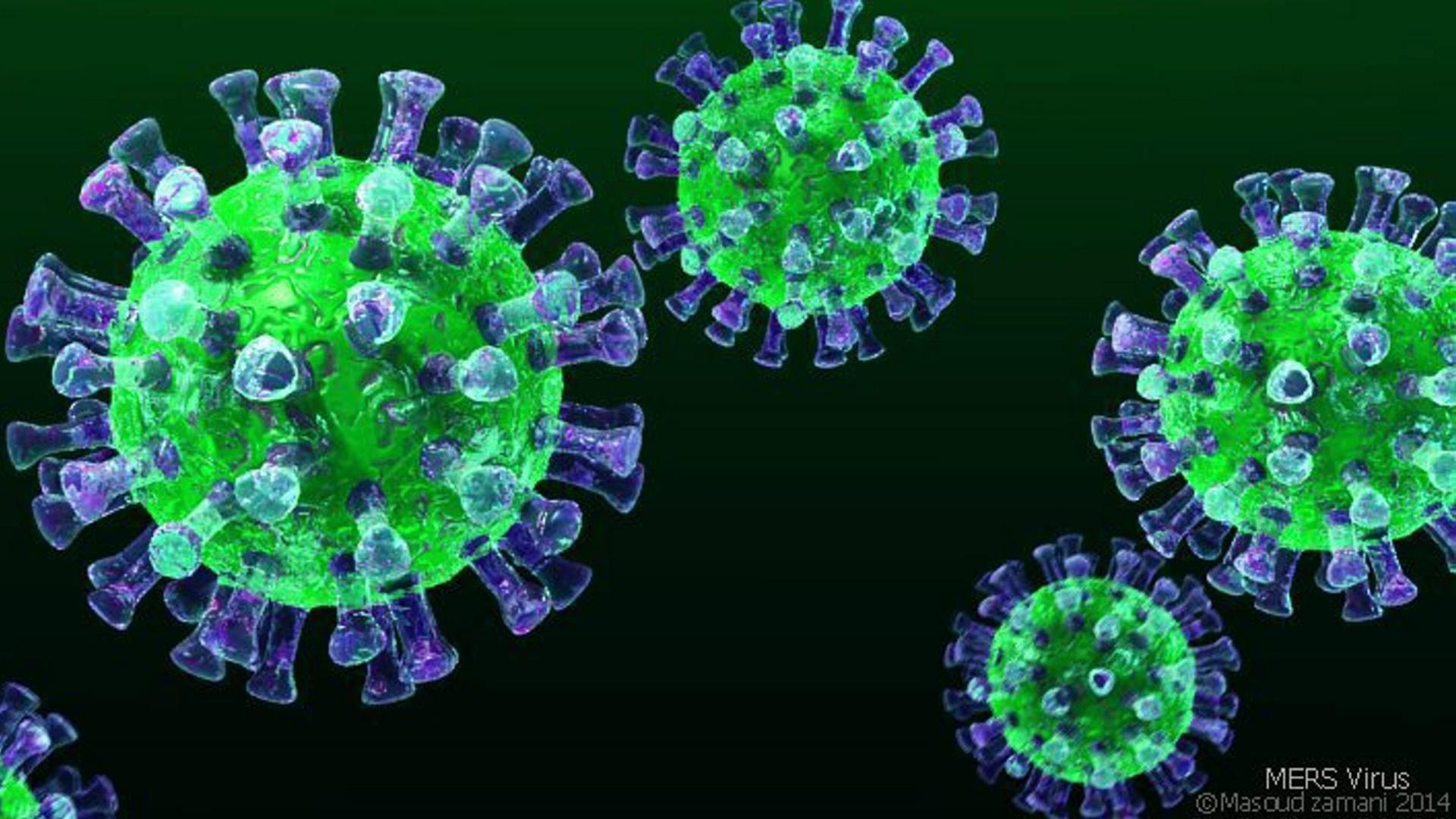 ҚР ДСМ: Қазақстанда коронавирустық инфекция тіркелген жоқ