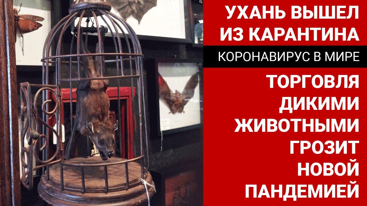Ухань вышла из карантина. Торговля дикими животными грозит новой пандемией