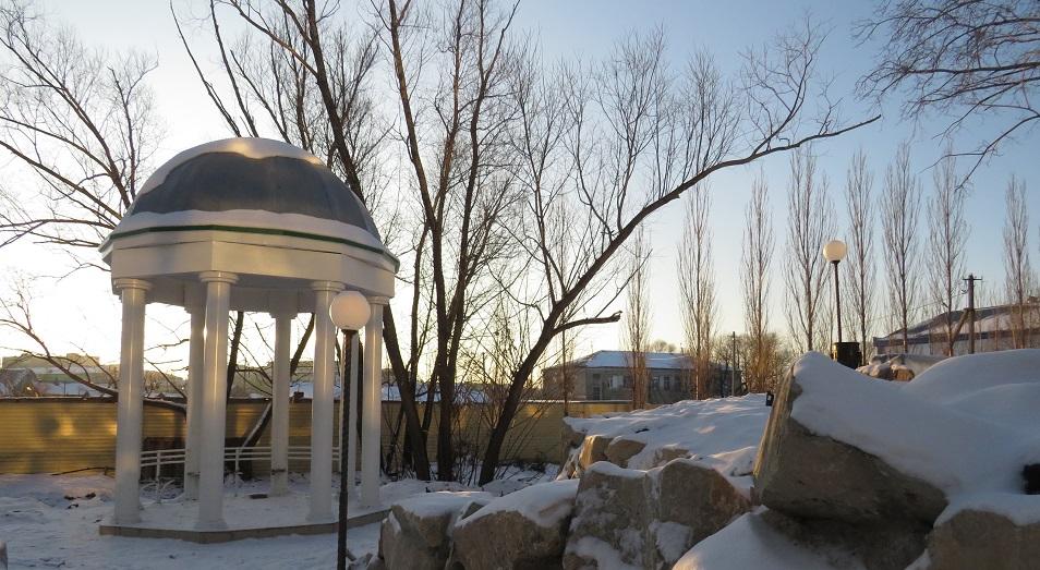 Строительство спортивного клуба уничтожит растения в Ботаническом саду Петропавловска