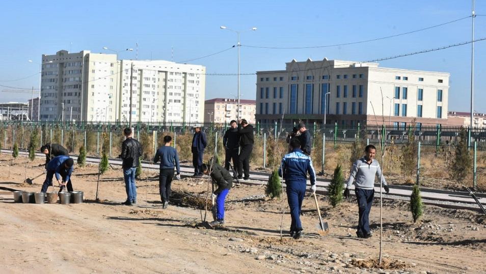 Түркістанда көгалдандыру жұмыстары қарқынды жүруде