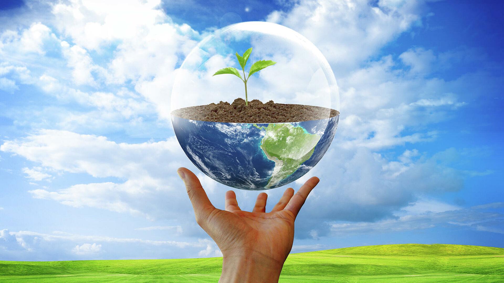 В Казахстане сократилось количество экологических уголовных правонарушений