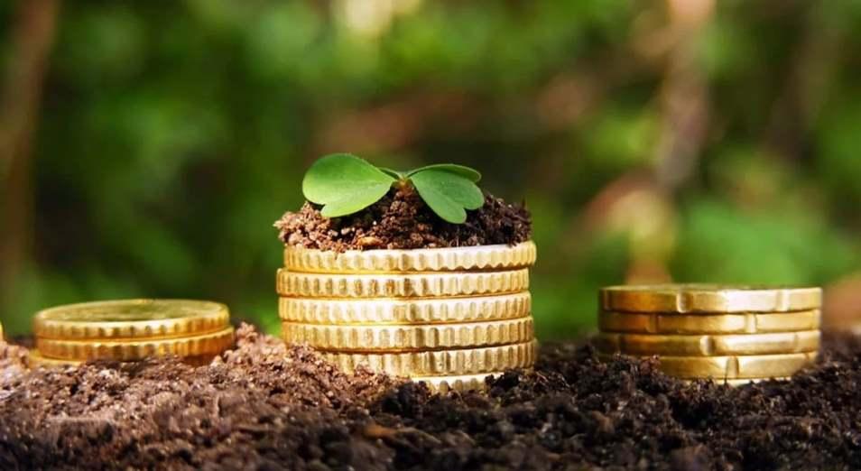 Повышение доходов на селе: обратная сторона медали