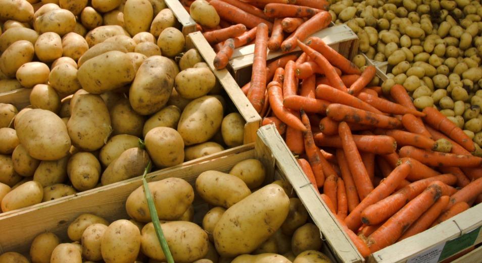 Непродуманный экспорт картофеля и моркови привел к колоссальному скачку цен