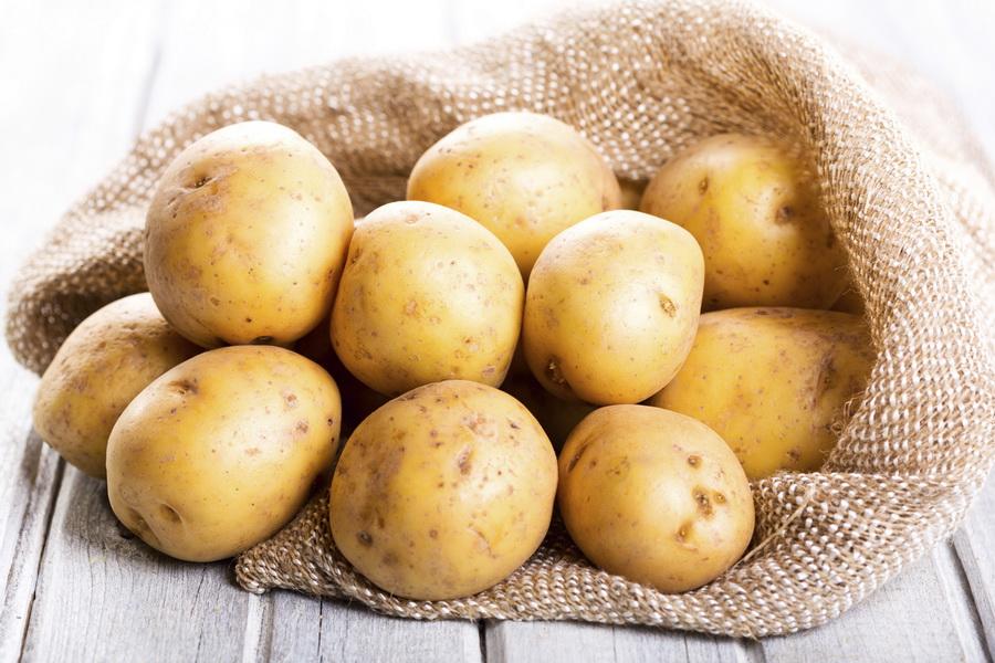 В Казахстане будут сеять картофель семенами