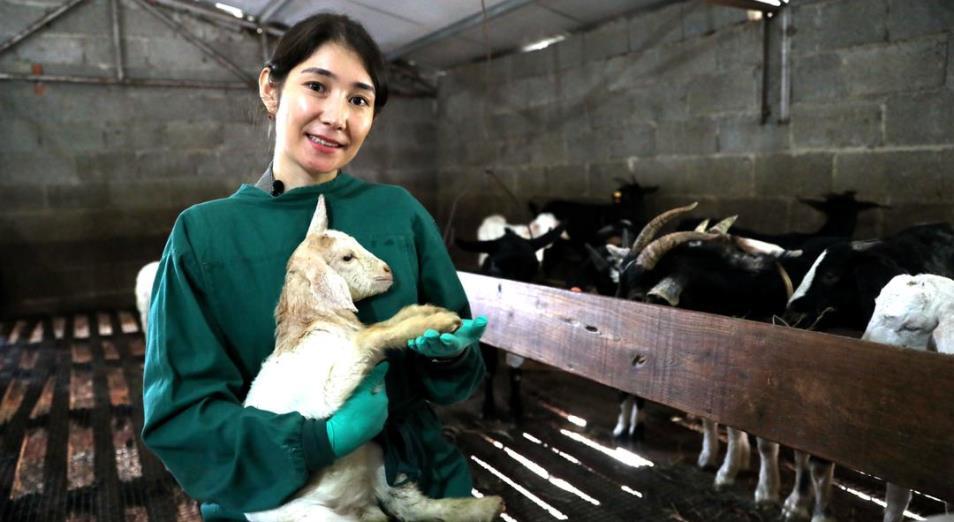 Как учится ветеринар из Кызылординской области в Китае
