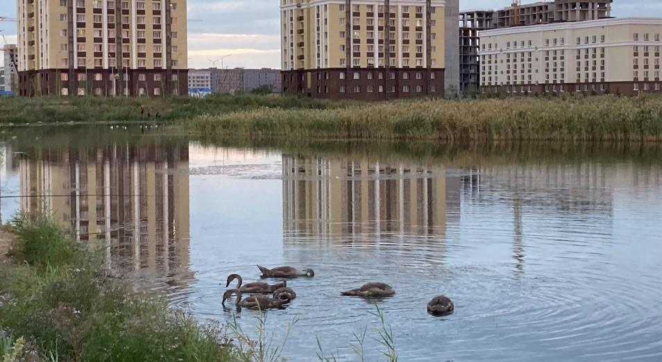 Малый Талдыколь: минэкологии РК объяснило, почему против ликвидации озера