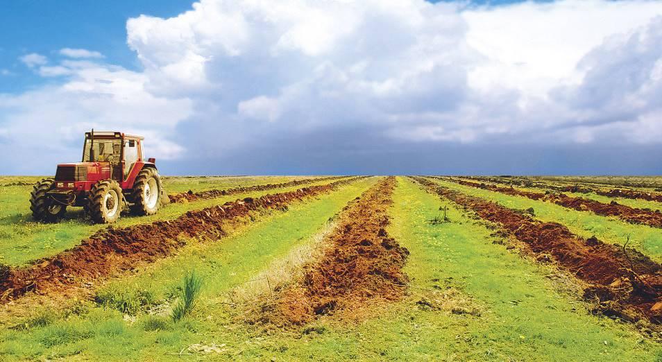 Мажилис принял поправки по сельхозземлям