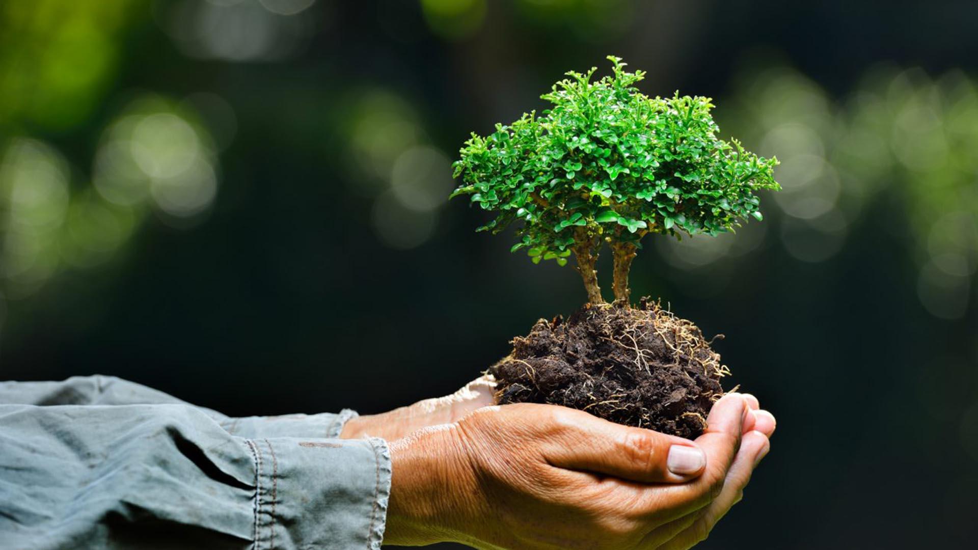 Новый Экологический кодекс принят в Казахстане