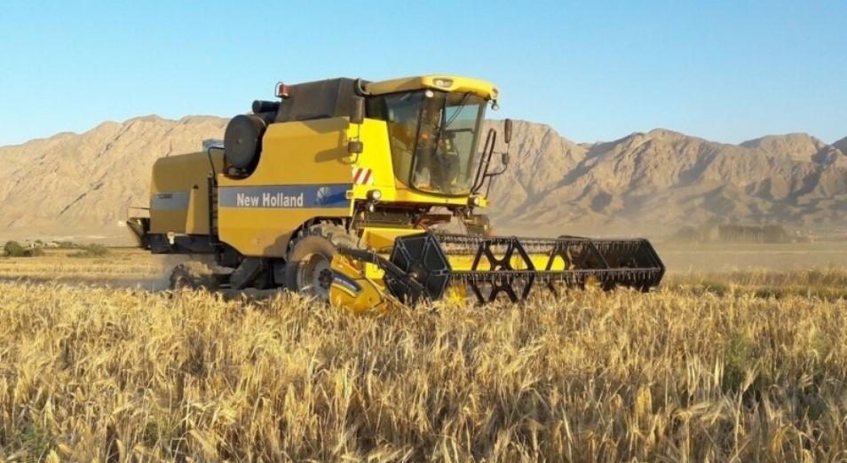 Из-за неопределенности в Афганистане Казахстан может перенаправить свою пшеницу в Иран