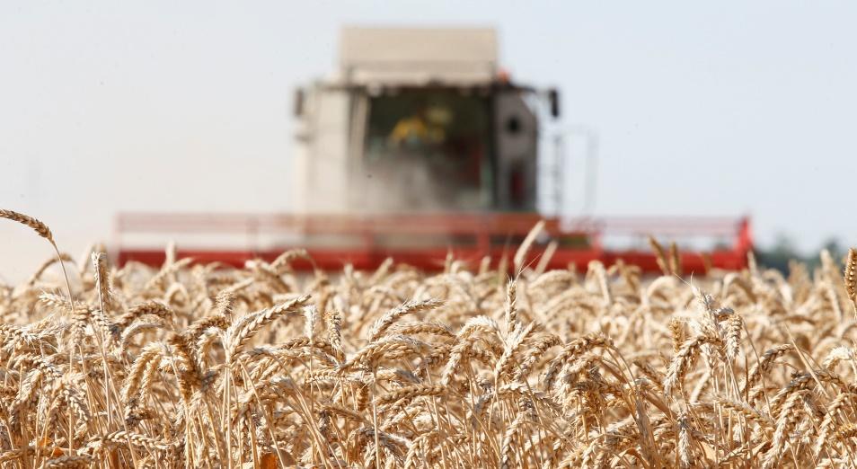 В Казахстане прогнозируют урожай зерна на уровне прошлых объемов
