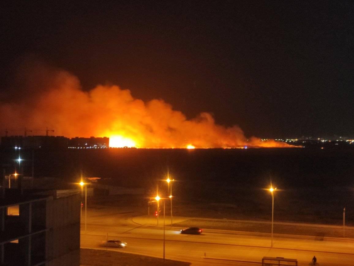 Сухостой горит в районе Есиль в Нур-Султане