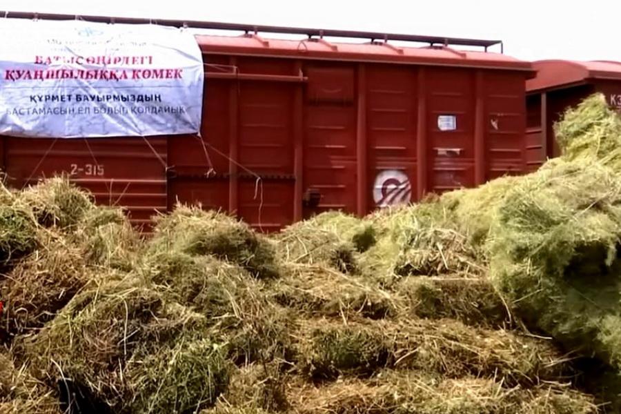 Глава КТЖ пообещал помочь доставить собранное волонтерами сено на запад РК