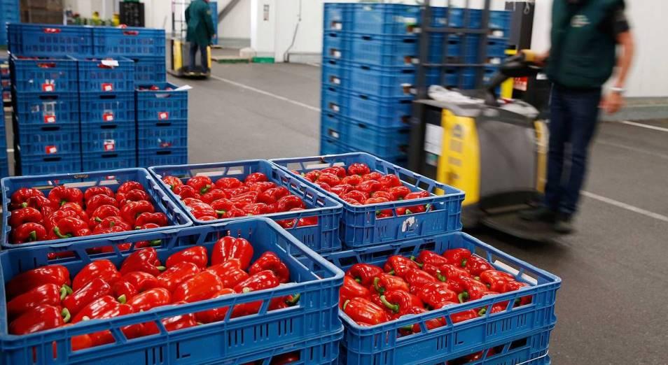 Минторг предложил ввести квоты на вывоз овощей и фруктов из страны