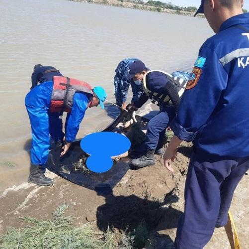В Кызылорде утонула 13-летняя девочка