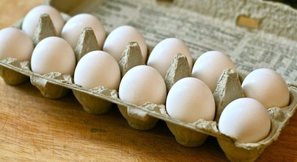 «Золотые» яйца: стоит ли удивляться удорожанию яиц?