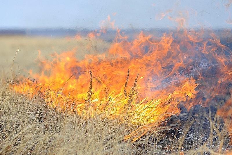 В Улытауском районе ликвидированы все пожары