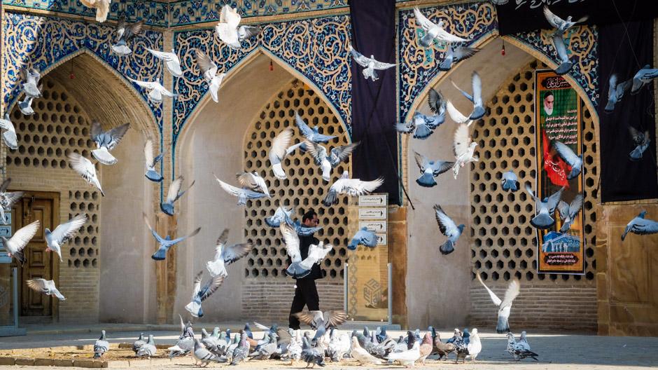 Иранские голуби летят над нашей зоной свободной торговли