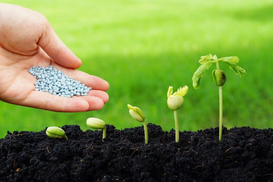 В Казахстане пересмотрят требования по сертификации пестицидов