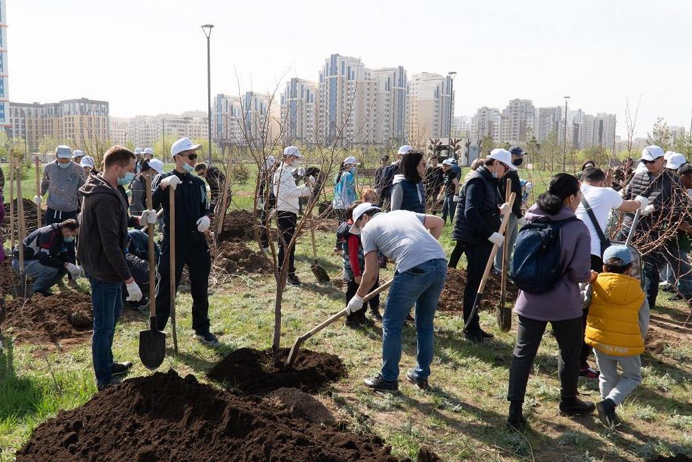 Яблоневый сад в честь Рахимжана Кошкарбаева высадили сотрудники НПП «Атамекен»