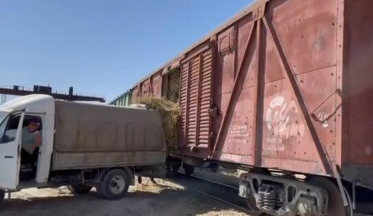 Маңғыстау облысына 400 вагоннан астам шөп жеткізілді – ҚТЖ