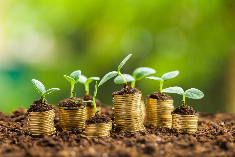 Агроөнеркәсіп кешеніне инвестиция тарту бір жылда 40%-ға өскен